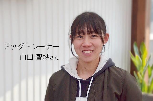 ドッグトレーナー 山田智紗(旧姓川西)