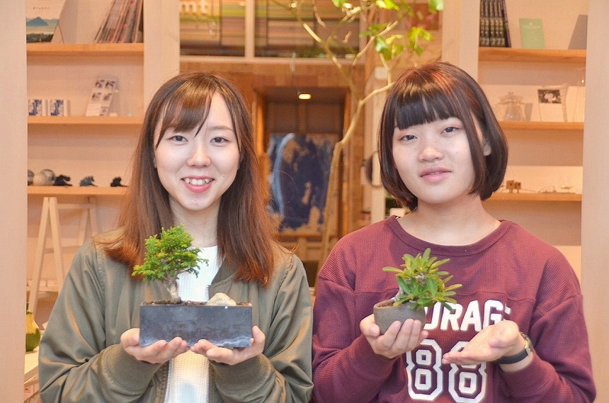 Bonsai Girls Project