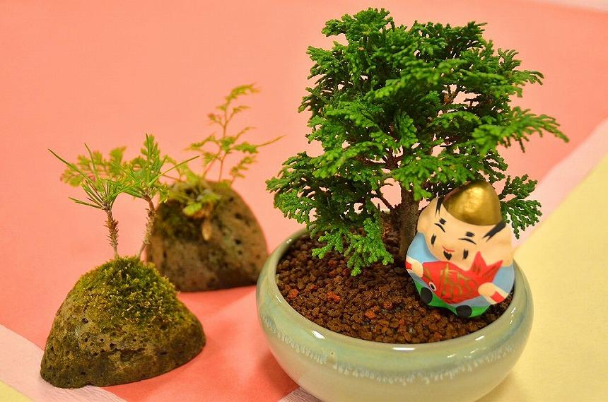 お正月飾り 盆栽