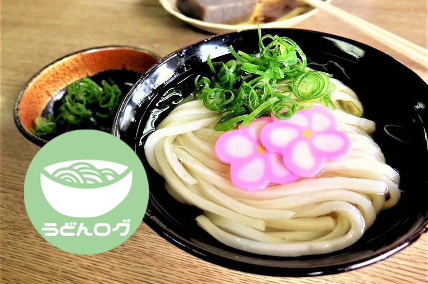 【うどんログ】飯野屋のうどんは細麺でもっちり!