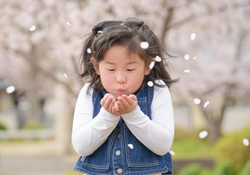 参加無料・写真進呈!「桜と一緒に撮っちゃうよ」企画開催。参加者募集します!